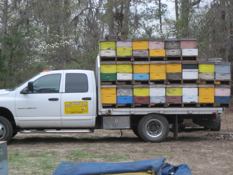 Ford's Honey Farm Bee Truck